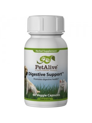 Digestive Support 60 Capsules
